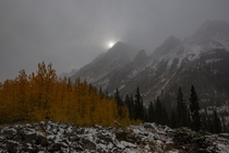 Snow shower in the Maroon Bells-Snowmass Wilderness yesterday morning - Colorado USA