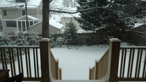 Snowfall in Northern Virginia backyard