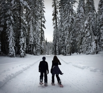 snowshoeing in Yosemite after winter storm