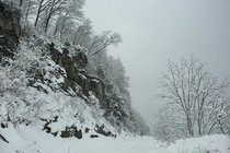 Snowstorm blankets the Tully Limestone cliffs along the shores of Cayuga Lake NY OC
