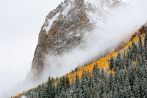Snowy and Foggy Fall Day near Crested Butte CO