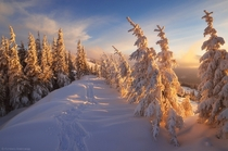 Snowy Carpathian Mountain Range by Ukraine Photographer Alexander Kotenko Jan