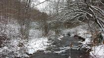 Snowy creek at hunting camp