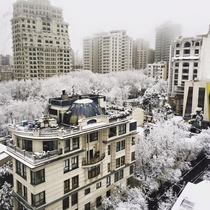 Snowy day in Tehran Iran this morning
