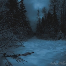 Snowy Winters in Alaska