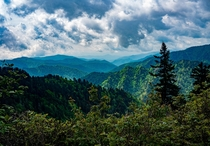So many layers so much green Great Smokey Mountain National Park x OC IG NationalParksAndRecreation