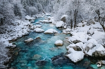 Soca the most beautiful river in Slovenia captured on a cold winter morning after a fresh snowfall  photo by Luka Esenko