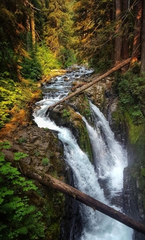 Sol Duc Falls  Olympic National Park WA USA