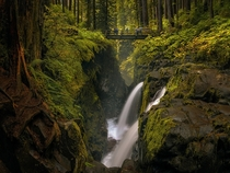 Sol Duc Falls Olympic National Park Washington State  by Ray Jennings  xpost rJunglePorn