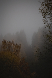 Some heavy fog in autumn  loc Finland