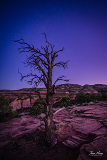 Some lovely blue hour lighting in Colorado National Monument Grand Junction CO This view was from Ottos Trail facing southwest