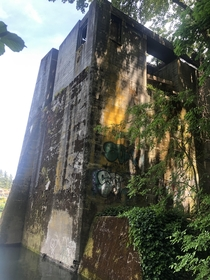 Some unknown ruin on the banks of the Willamette