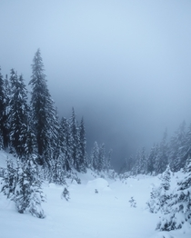 Sometimes Crater Lake gets a little foggy
