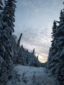 Somewhere in the Laurentian Mountains Quebec after several hours of snow-shoeing and before several hours of wine and cheese fondue OC