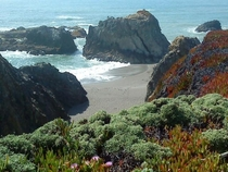 Sonoma CountyNorthern Calif Beach