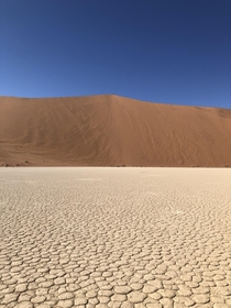 Sossusvlei Namibia Where the m high Big Daddy Dune meets the hard dry earth And yes I did climb it and run down