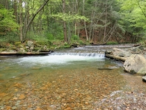 Sparkling clear waters of Asaph Run - Pennsylvania Wilds