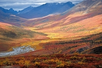 Spectacular morning light over the North Klondike Valley in Yukon Canada Mount Tombstones peak is clipped by clouds in the upper left  Marc Shandro