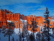 Spending my birthday inside Bryce Canyon after last weeks blizzard
