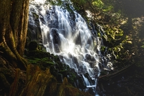 Spent the day visiting one of my favorite waterfalls in the world Romona Falls OR