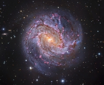 Spiral galaxy Messier  otherwise known as The Southern Pinwheel or even more appropriately The Thousand-Ruby Galaxy is  million light years away and believed to contain at least  billion stars Image credit Subaru amp Hubble Telescopes ESO amp Robert Gendl