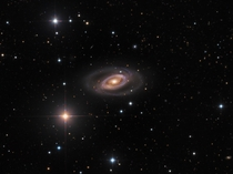 Spiral Galaxy NGC    Image Credit amp Copyright Mike Selby Warren Keller