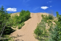 Spirit Sands in Spruce Woods Provincial Park Manitoba Canada -