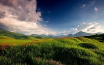 Spirits of Spring - grassy hills of Kyrgyzstan  photo by Lazy Vlad