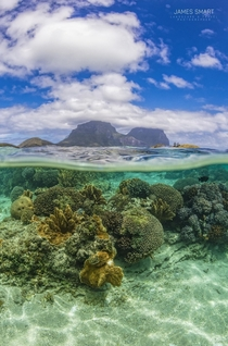 Split image in the beautiful waters of Lord Howe Island Australia in Spring  x Instagramjamessmartphotography