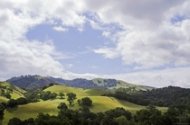 Spring at Sunol Regional Wilderness San Francisco Bay Area California