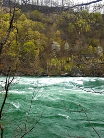 Spring waters of Niagara River