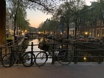 Springtime in Amsterdam at  AM