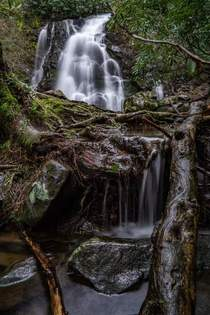 Spruce Flats Falls in the Great Smoky Mountains Tennessee USA