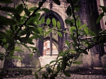 St Dunstan London  Ruined church with small near main entrance To take these I cut my hand amp got late for a walk sorry Nes If you ever stop by good luck with finding a peaceful moment thou this place is disturbed often by insta-model-girls  Still worth