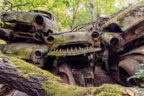 Stacks of abandoned cars covered in moss  Photographed by Timeless Seeker