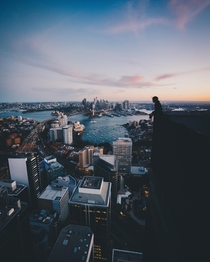 Standing Above Sydney