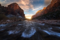 Standing in the freezing Virgin River for this beautiful view was totally worth it Zion National Park UT