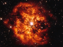 Star Hen -  more commonly known as WR   and the nebula M- which surrounds it found in the constellation of Sagittarius ESAHubble amp NASA Judy Schmidt