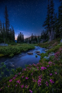 Stars Above a little stream in Olympic National Park WA  Photo by David Hodge xpost from rUnitedStatesofAmerica