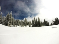 Steamboat Springs Winter Wonderland