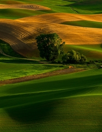 Steptoe Butte Park Washington