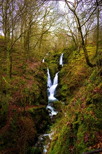 Stock Ghyll Force waterfall Ambleside Lake District UK  IG saintdle