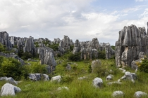 Stone Forest Yunnan China