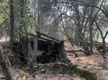 Stone wall outlasted its shack in the woods on Clear Lake California