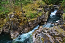 Stopped off at Lower Little Quilacum Falls while driving the Alberni Highway through British Columbia Canada