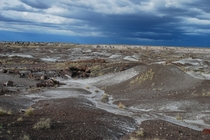 Storm brewing over the badlands Petrified Forest National Park