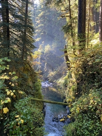 Straight out of a fairytale Sol Duc Falls Olympic National Park WA