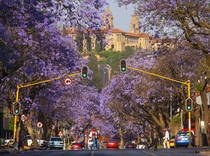 Struben Street and Union Buildings Pretoria South Africa