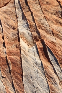 Stumbled across this awesome geology hiking through the Valley of Fire Its fascinating and makes me want tiramisu