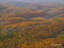 Stunning Aerial of the Ozark Mountains in the Fall Only real hills between Rockies and Appalachians